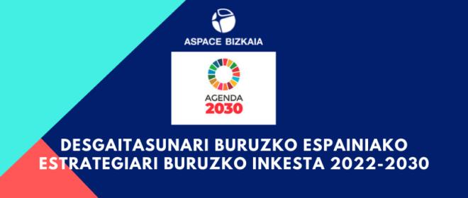Encuesta sobre la futura Estrategia Española sobre Discapacidad 2022-2030